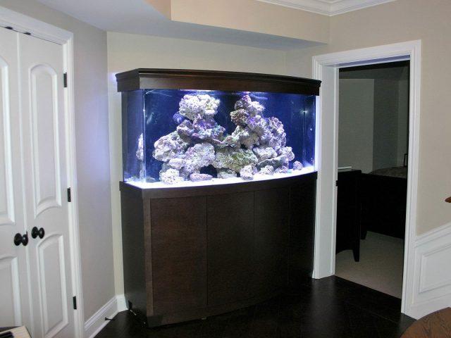 Radius fish tank stand